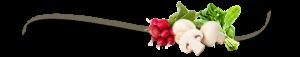Aquesta imatge té l'atribut alt buit; el seu nom és farmseparadormanopla-300x57.png